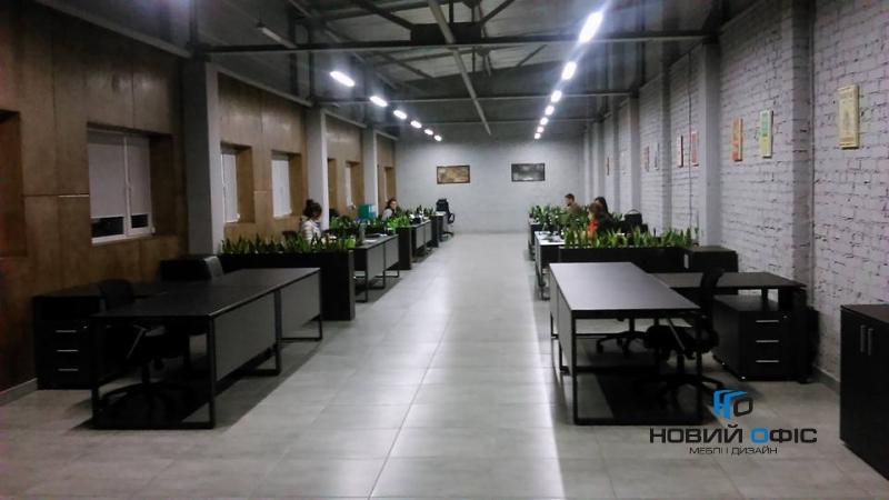 Заказчик: оптовая торговля овощами и фруктами  продукт: kubo | Фото - 0